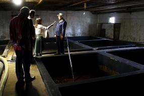 深さ3メートルにもなるもろみタンク。