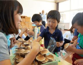 玉野市内での保育園で行われたシイタケの育成・収穫体験の様子。楽しそうにシイタケを収穫する園児たち。
