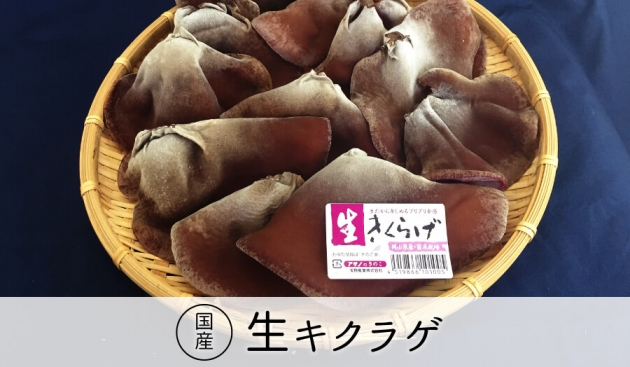 浅野産業きのこ家の国産生キクラゲ