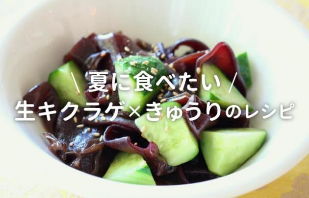 夏に食べたい生キクラゲ×きゅうりのレシピ